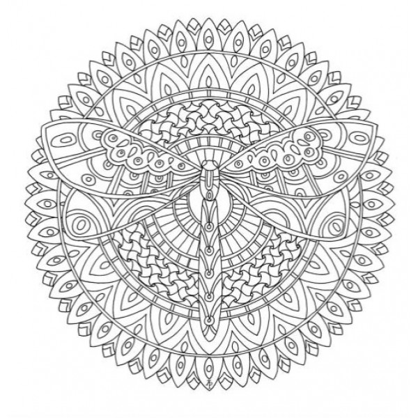 Color Me 1 Coloring Book: Color me cool adult coloring book ...