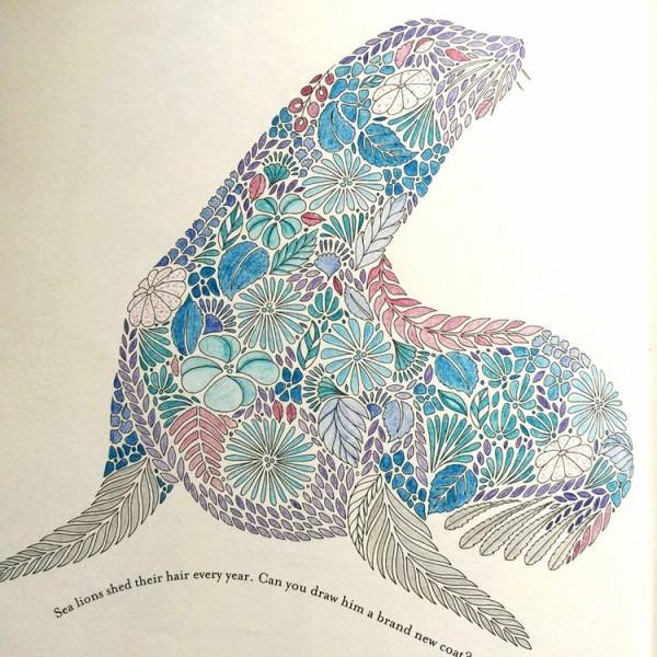 Animal Kingdom Coloring Book Jellyfish
