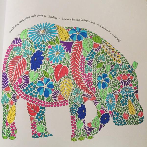 93 Animal Kingdom Coloring Book Elephant