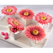Kate Aspen Daisy Favor Box